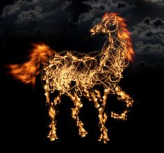 chinese zodiac: year of the fire horse