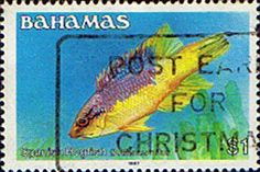 Postage Stamps Bahamas 1986 Fish Spanish Hogfish SG 669A Fine Used 598 Scott 615 Other West Indies and British Commonwealth Stamps HERE!