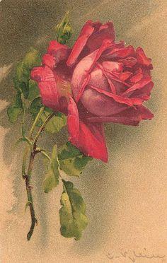 Flowers727