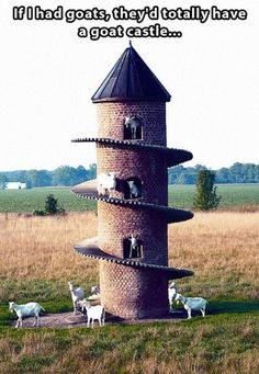 'Goat Tower' - Wolf Creek State Park on Lake Shelbyville in Illinois. Dave Johnson built this tower for his Saanen goats. It gives the goats shade as well as a place to climb that they would normally get in their native Switzerland. Farm Animals, Funny Animals, Cute Animals, State Parks, Wolf Creek, Tier Fotos, Mundo Animal, Farm Life, Architecture