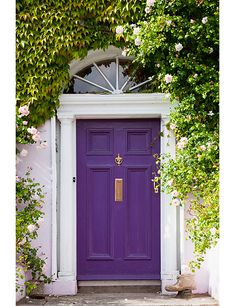 Idea #2: Lush, gorgeous greenery can up the curb appeal or any home, but that doesn't mean your front door has to play second fiddle. There's something about plum that makes it feel whimsical and daring but historical and classic at the same time.