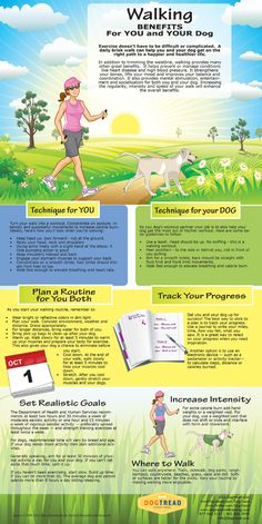 Walking Benefits For You and Your Dog - http://www.thelazypitbull.com/2014/01/walking-benefits-for-you-and-your-dog/