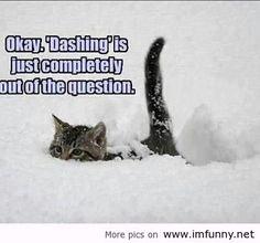 hate snow sayings