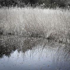 Lieux et non lieux©D.Dauphy