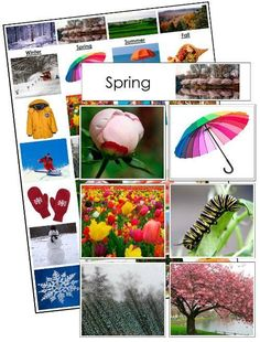 Seasonal Sorting Cards - Sort and classify real-life photographs of common seasonal items and scenes. This material includes 4 category cards, 24 sorting cards, 1 control chart, and instructions. A fun preschool printable. Montessori Preschool, Preschool Science, Preschool Projects, Preschool Class, Teaching Kindergarten, Preschool Ideas, Teaching Ideas, Weather Cards, Weather Seasons