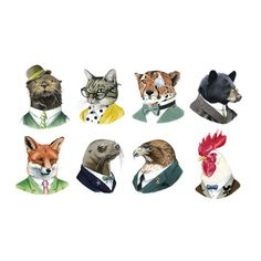 Tattoos - Animal Society Set