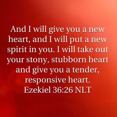 Ezekiel 36:26... God makes all things new when we accept His gift of salvation through Jesus Christ.