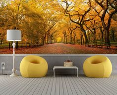 Autumn in the Park Repositionable Wall Mural by FotoWalls. Custom Removable Wall Paper, Murals & Decals. Find it on Etsy! https://www.etsy.com/listing/204900714/autumn-in-the-park-repositionable-wall