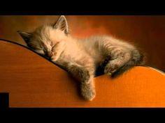 Meditatie Relaxare inaintea somnului de noapte