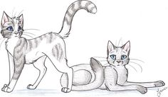Ivypool and Dovewing by Cape-Cat on DeviantArt