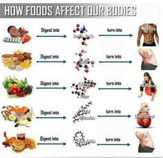 How foods effect our bodies