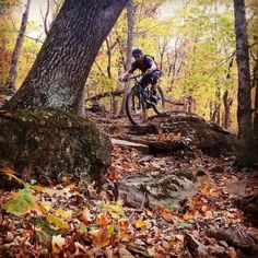 Finding that #freeride #mountainbike line at #kesslerpark with...