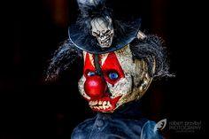 https://web.facebook.com/Sophies-Creepy-Dolls-1798607390403985/?ref=bookmarks