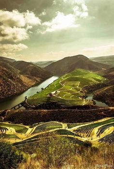Castelo Melhor, Douro, Portugal, surrounded by terraced vineyards and the Douro River. Douro Portugal, Spain And Portugal, Places In Portugal, Portugal Travel, Places Around The World, Travel Around The World, Around The Worlds, Places To Travel, Monuments