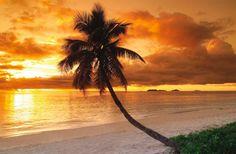 Tokoriki Island Resort - Mamanuca Islands, Fiji - Luxury Hotel Vacation from Classic Vacations Beaches In The World, Places Around The World, Fiji Hotels, Fiji Beach, Sunset Beach, Travel To Fiji, Visit Fiji, Fiji Islands, Beach Wallpaper