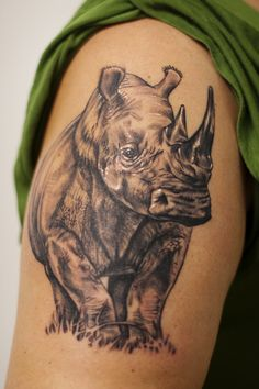 Rhinos symbolize things not always being what they seem; just because they can be aggressive doesn't mean they want to.
