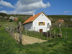 Balatonszepezd, Asztalos - Wine Shop - Imre pince Öreg-hegy Borút 1. Travelogue, Traditional House, Hungary, Cabins, Cottages, Landscapes, Houses, Country, House Styles
