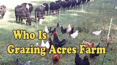 A short introduction to our farm.