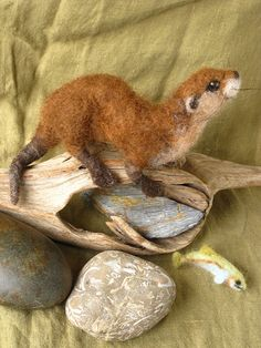 Otter by Hannah Stiles
