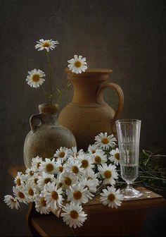 Still life with daisies by Inna Korobova Still Life Photos, Still Life Art, Art Et Nature, Daisy Love, Still Life Flowers, Still Life Photography, Pretty Pictures, Painting Inspiration, Flower Art