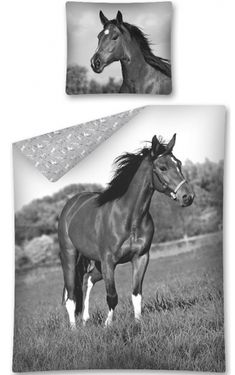 3d obliečky kôň Moose Art, Horses, Classic, Animals, Derby, Animales, Animaux, Animal, Classic Books