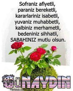 Allah Islam, Good Morning, Buen Dia, Bonjour, Bom Dia
