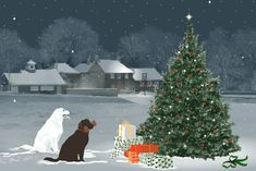 Christmas Tree, Presents and Dogs snow dogs puppies merry christmas happy holidays presents christmas christmas lights christmas tree christmas images christmas photo christmas greetings Christmas Tree And Dogs, Christmas Post, Christmas Scenes, Christmas Pictures, Christmas Greetings, Winter Christmas, Vintage Christmas, Christmas Music, Jacquie Lawson Christmas