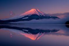 "ileftmyheartintokyo: ""  紅富士 / Beni-Fuji by Shinichiro Saka Via Flickr: 山中湖 平野 2014:12:30 06:51:09 """