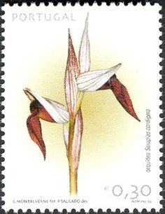 Herbier Philatélique Pierre Guertin Philatelic Herbarium: New genus: Portugal Laurus Nobilis, Portugal, Orchidaceae, Flower Stamp, Orchids, Flora, Postage Stamps, Plant, Community