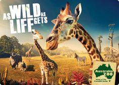 Publicidad Zoológico