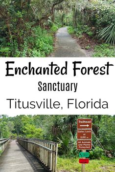 Titusville Enchanted Forest Sanctuary - Brevard County, Florida - Valerie Was Here Miss Florida, Florida Vacation, Florida Travel, Travel Usa, Florida Living, Hiking In Florida, Florida Trips, Places To Travel, Places To See