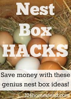 Free & Low Cost Nest Box Hacks