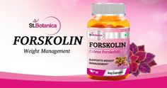 St.Botanica Forskolin 500mg Extract For Weight Management