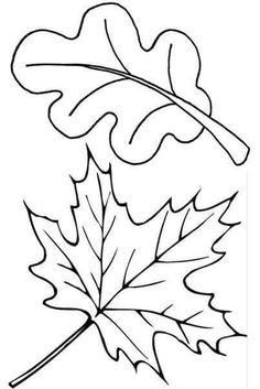 Two fall leaves coloring page - Free Printable Coloring Pages by Sherry Clapp Fall Leaves Coloring Pages, Leaf Coloring Page, Coloring Book Pages, Coloring Sheets, Fall Coloring, Autumn Art, Autumn Leaves, Maple Leaves, Tree Leaves