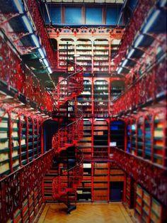 Las bibliotecas han existido desde los tiempos del Imperio Romano y Alejandro Magno, para preservar el conocimiento para el futuro y sobretodo para compartirlo con sus contemporáneos.