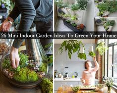 DIY 20+ Mini Indoor Garden Ideas to Green Your Home
