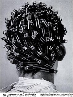 """Poodle clips! 1952    """"The hairdressing salon at Best  Co. in New York poodles nearly 500 heads per day, or 4 out of every 5 of the haircuts given there. Salons outside of New York reported that an average of a third of all of their haircuts are poodles."""""""