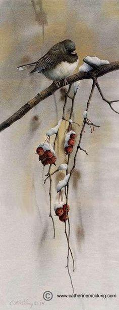Catherine McClung watercolor - Snowbird by MyohoDane