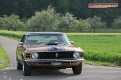 Für einige war er der beste Mustang überhaupt: http://www.zwischengas.com/de/FT/fahrzeugberichte/Ford-Mustang-Grande.html?utm_content=buffer14619&utm_medium=social&utm_source=pinterest.com&utm_campaign=buffer  Foto © Bruno von Rotz