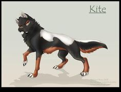 Meet Kite a leading athletic alpha who lets nothing get in her way. She hangs out with a the boys a lot and considers herself one of the guys. She firmly believes that anything a boy can do a girl can do to. She loves hanging out with her best friends. Also if pups are abandoned them she takes them and raises them as her brothers and sisters. But secretly she is in her mind the mom