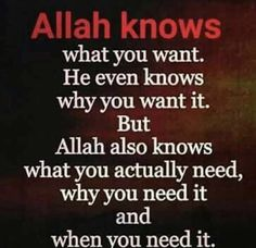 because Allah knows Everything Allah Quotes, Muslim Quotes, Quran Quotes, Islamic Inspirational Quotes, Islamic Quotes, Islamic Teachings, New Quotes, True Quotes, Alhamdulillah