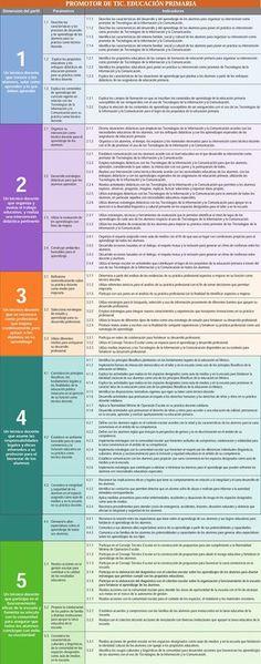 Perfil, parámetros e indicadores Promotor de TIC. Educación Primaria
