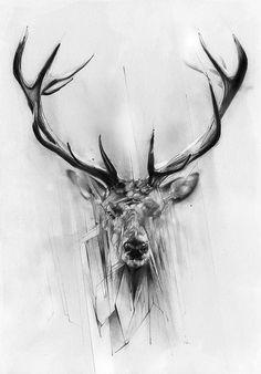 #deer #pencil