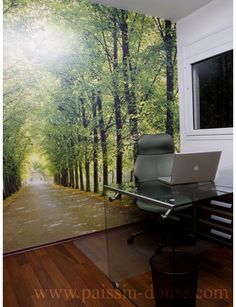 Imagine the white wall that was probably there before they put up this amazing photo mural. Which one would you prefer? The white wall or the mural? I would choose the mural every time. Modern home office by paissin-dome