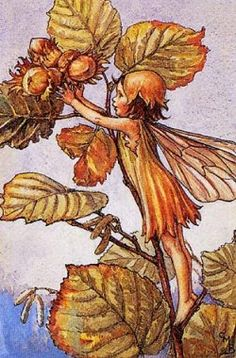 Cicely Mary Barker1