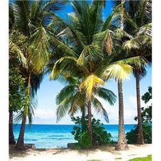 Fotomurales de Paisajes de Playas, Palmeras