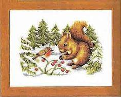 Gallery.ru / Фото #1 - 2 - Olsha  squirrel in winter