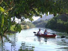 Hidden Falls Kayak Adventure shore excursion - Kauai, HI