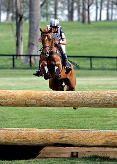 Overall & Eventing Horse Of The Year: Theodore O'Connor | The Chronicle of the Horse