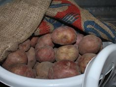 Curing potatoes before winter storage is an important process that will help assure longer storing times for your potato crop. Canned Potatoes, Storing Potatoes, Ripen Green Tomatoes, Canned Pickled Beets, Jouer Au Poker, Home Vegetable Garden, Herbs Garden, Garden Fun, Garden Pests